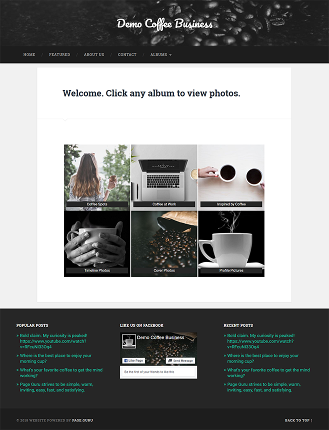page guru template business albums page